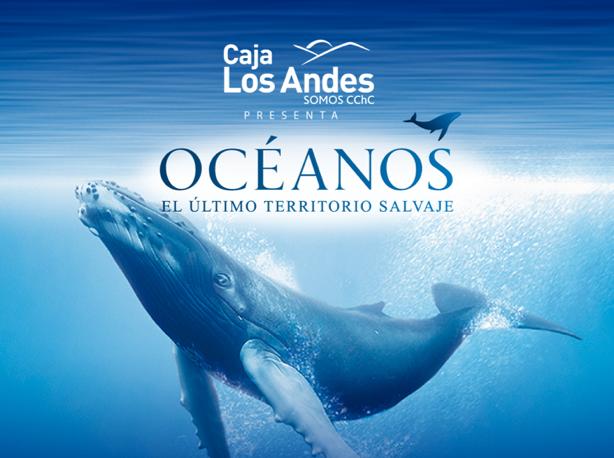 """Iquique conocerá el mar como nunca antes con Exposición """"Océanos, el último territorio salvaje"""""""