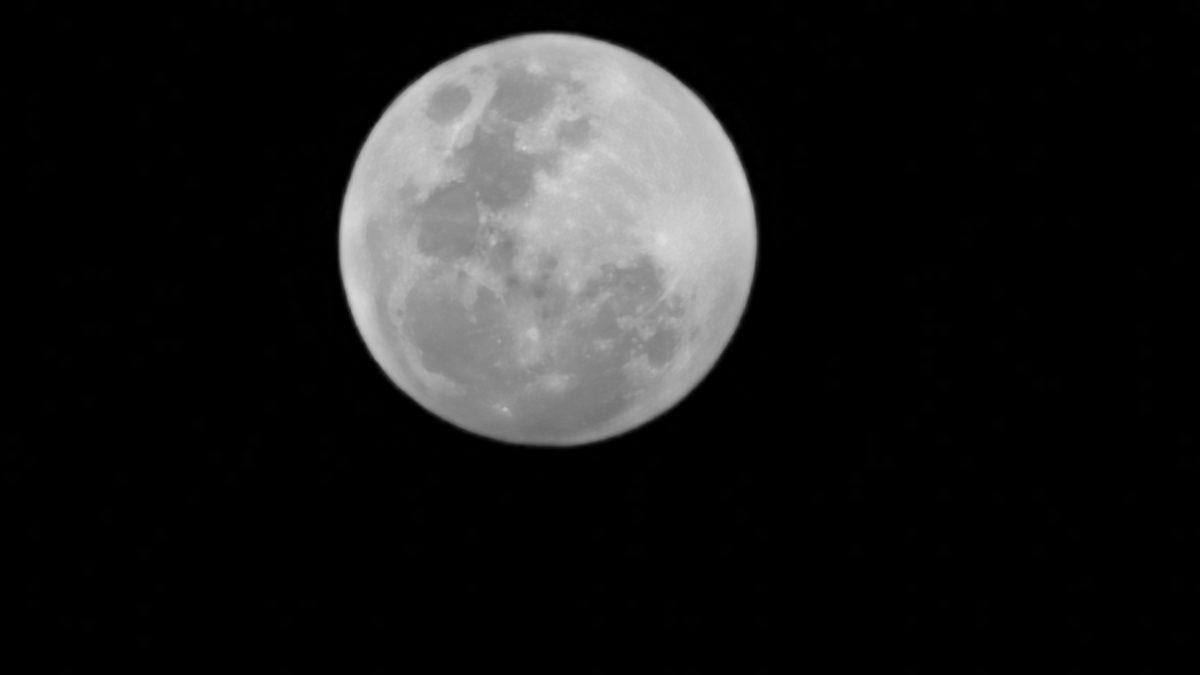 Huawei celebra los 50 años de la llegada del hombre a la luna junto a José Maza y HUAWEI P30 Pro